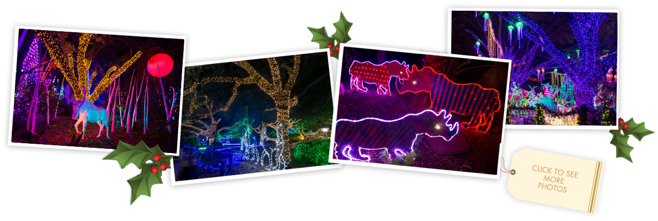 Get Tickets Zoo Lights Zoo Lights